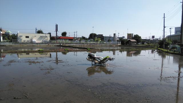 水田を行く田植え機