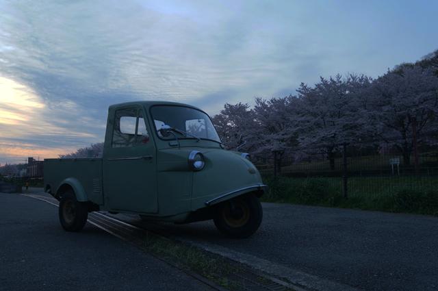 片倉公園の桜が咲いている朝