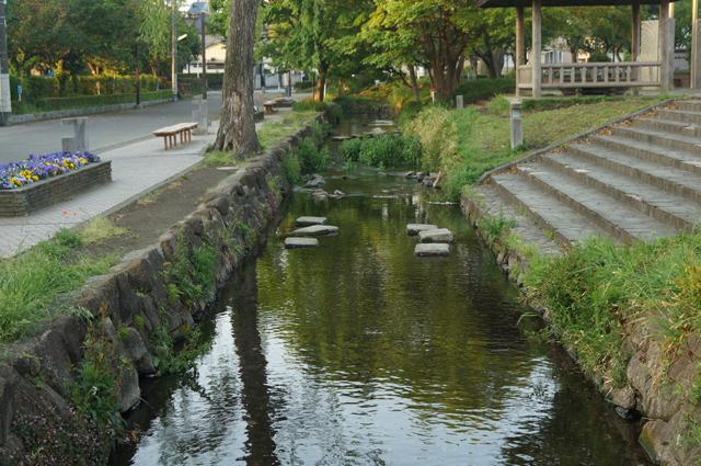 国立六小横に流れる矢川