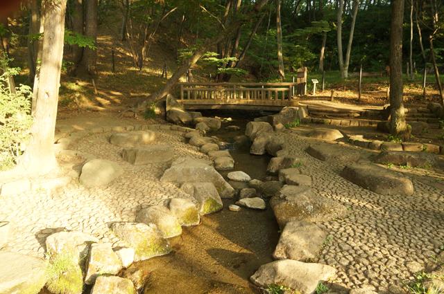 黒川公園の小川