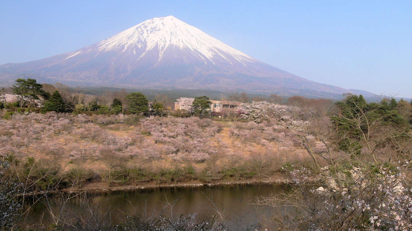 090411富士桜墓地公園001