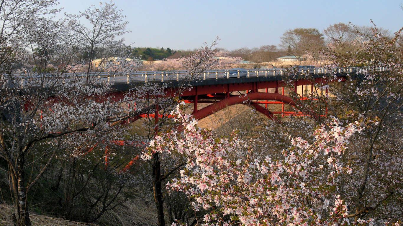 090411富士桜墓地公園011