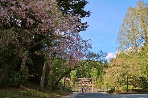 昭和天皇武蔵陵 (480x320)
