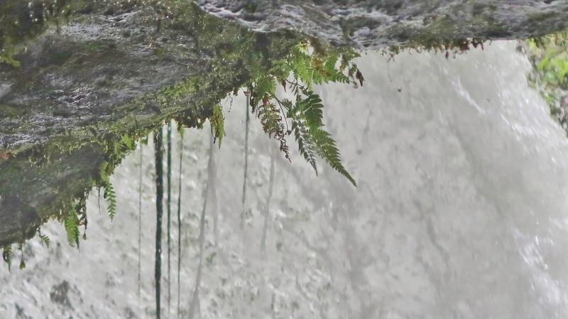 鍋ケ滝10 (800x449)