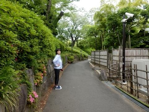 増上寺 (3)