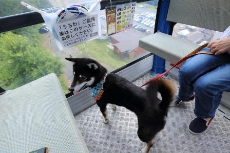 箱館山ゆり園ゴンドラ12