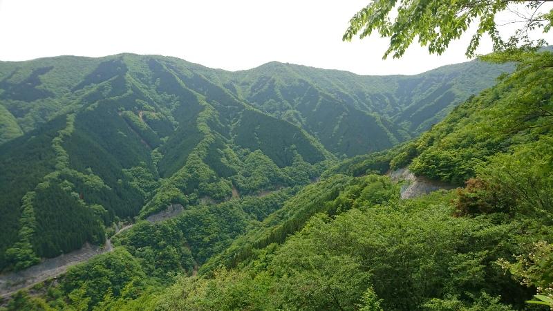 天川村3180516