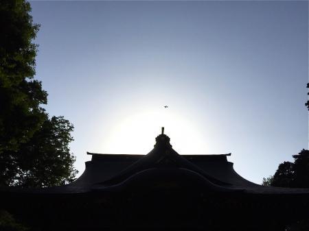 180516yasaka2.jpg