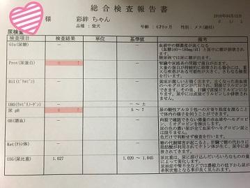 blog12838.jpg