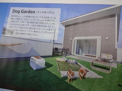 羽倉崎の春のイベント04