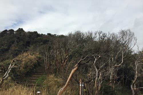 弓ヶ浜12