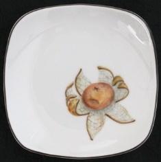 プラチナ縁四角皿ツチグリ11