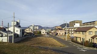 20180107野田池(その3)