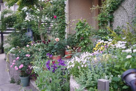 garden20180501-2.jpg