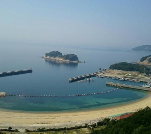 徳島ミニ2