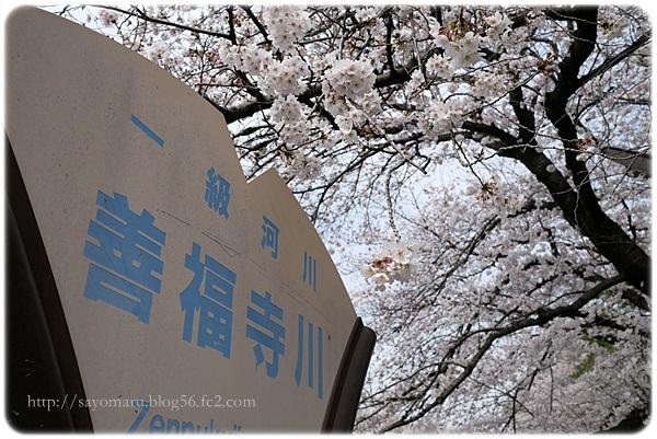 sayomaru23-279.jpg