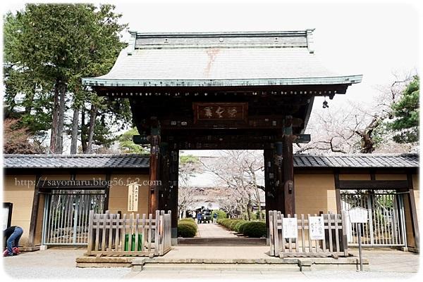 sayomaru23-295.jpg