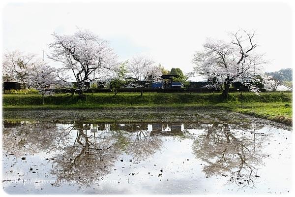 sayomaru23-643.jpg