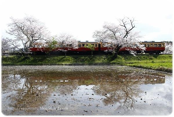 sayomaru23-645.jpg