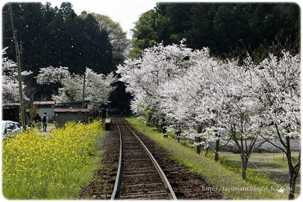 sayomaru23-648.jpg