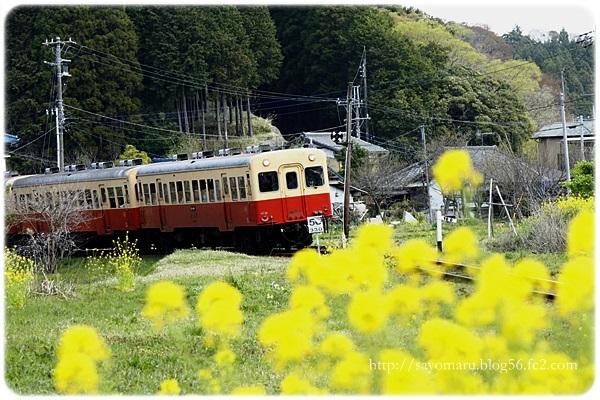sayomaru23-658.jpg