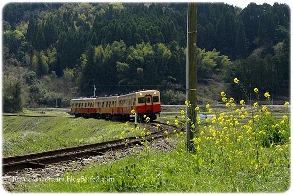 sayomaru23-660.jpg