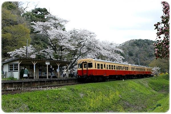 sayomaru23-677.jpg