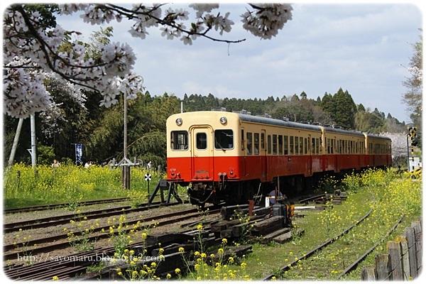 sayomaru23-678.jpg