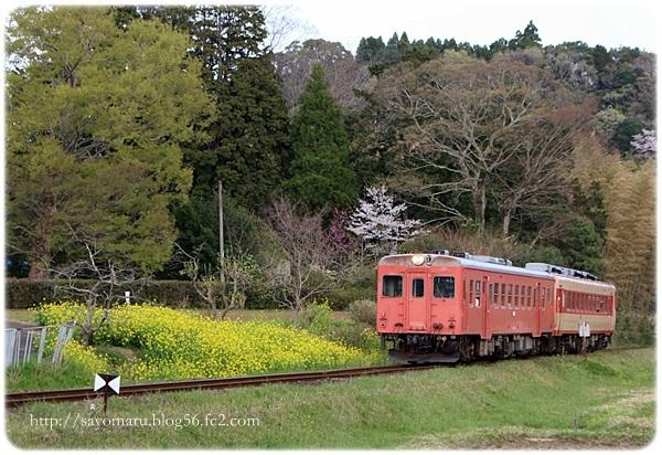 sayomaru23-686.jpg