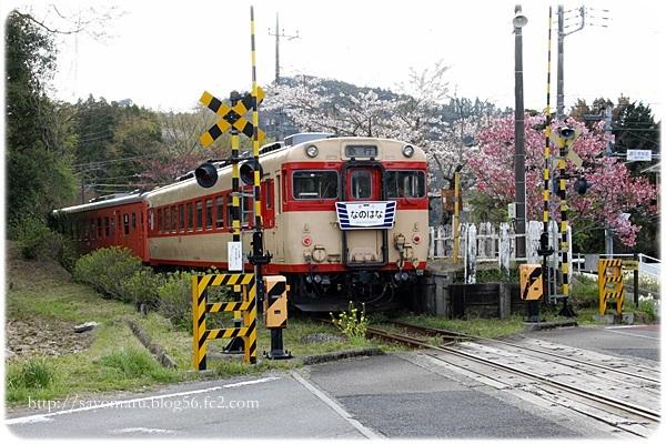 sayomaru23-687.jpg