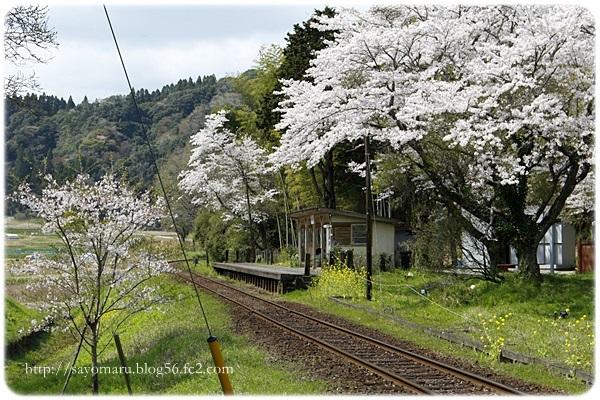sayomaru23-705.jpg