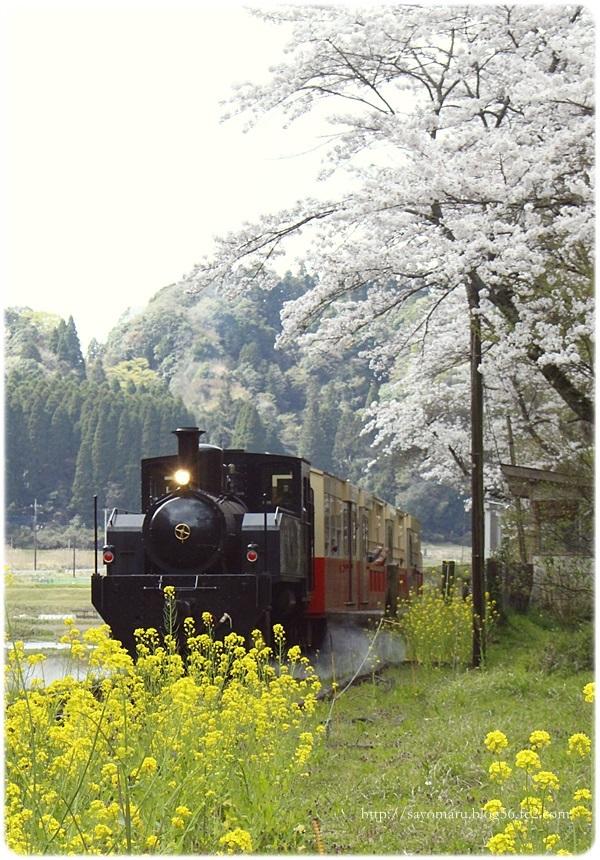 sayomaru23-707.jpg
