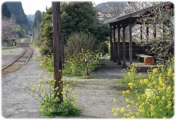 sayomaru23-713.jpg