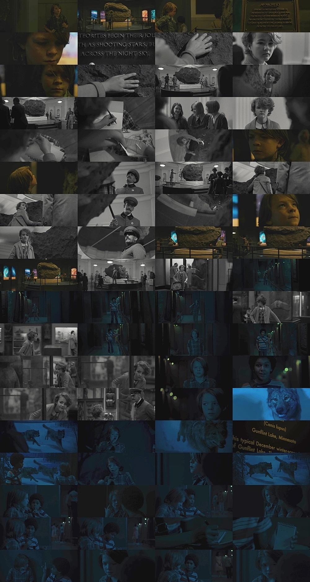ワンダーストラック (2017)