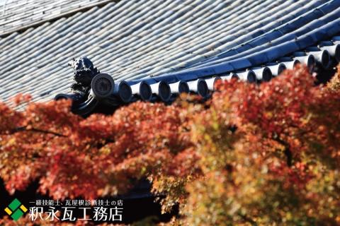 秋の京都の鬼瓦、いぶし瓦屋根-009