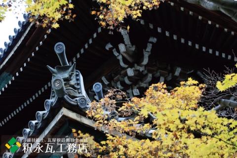 秋の京都の鬼瓦、いぶし瓦屋根-049