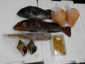 6鮮魚セット2018413