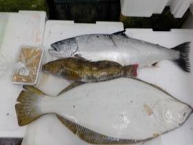 6鮮魚セット2018416