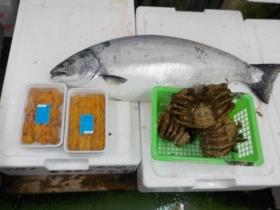 7鮮魚セット2018416