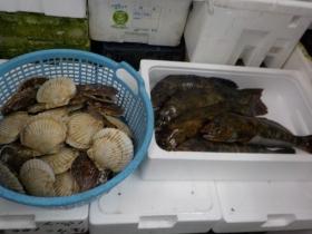 14鮮魚セット2018416