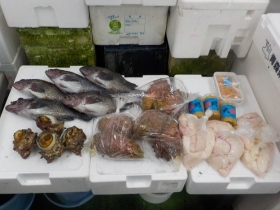 9鮮魚セット2018417