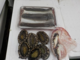 12鮮魚セット2018417