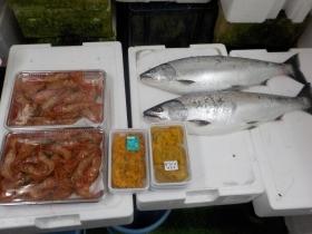 14鮮魚セット2018417