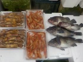 13鮮魚セット2018417