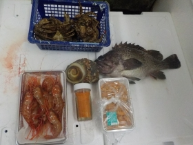 8鮮魚セット2018420