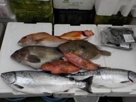 1鮮魚セット2018421