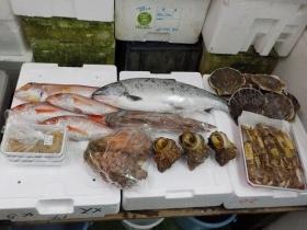 2鮮魚セット2018427