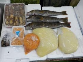 4鮮魚セット2018427