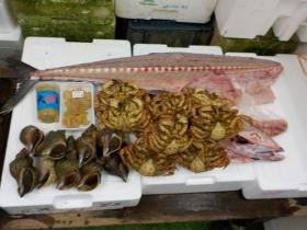 10鮮魚セット2018427