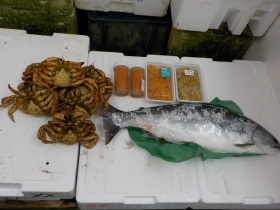 8鮮魚セット2018428